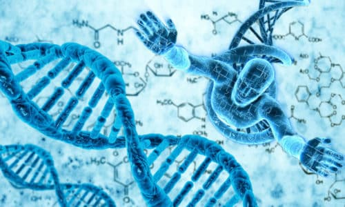 Преднизолон связывается с ДНК и влияет на биосинтез различных белков