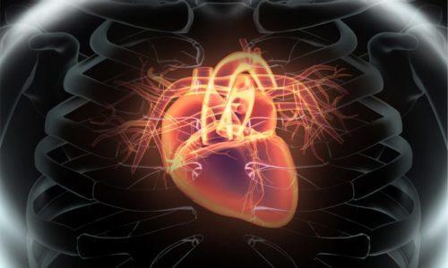 При инфаркте миокарда препарат способствует ограничению области ишемии сердца