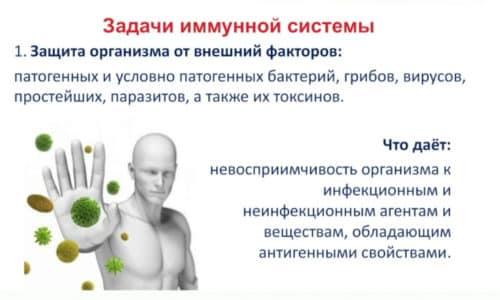 Блеомицетин обладает умеренным иммуномодулирующим действием, а значит, не оказывает негативного влияния на защитные силы организма