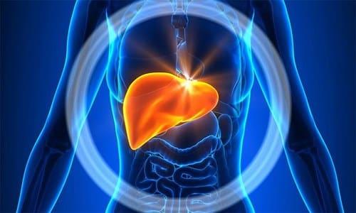 Рассматриваемое средство влияет и на работу печени: усиливает синтез глюкозы, что приводит к увеличению продукции инсулина